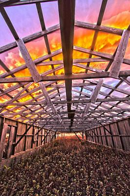 Duck Farm Skeleton Skylight Art Print