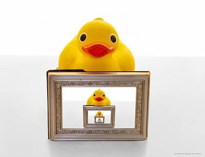 Duck Infinity Art Print by Chrystyne Novack