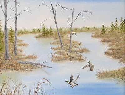 Duck Marsh Art Print by Janet Hufnagle