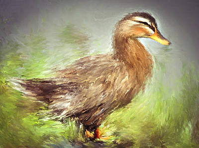 House Pet Digital Art - Duck Near The Water by Yury Malkov