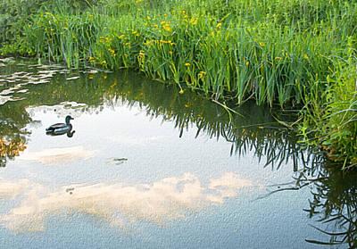 White River Scene Digital Art - Duck On A Lake by Svetlana Sewell