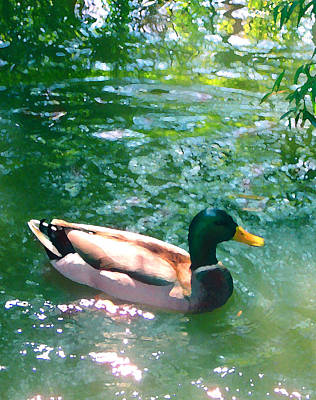 Duck Painting - Duck On Green Pond by Amy Vangsgard