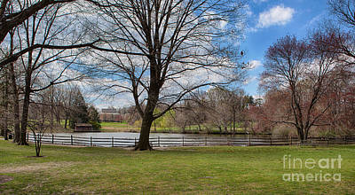 Photograph - Duck Pond Haverford College by Kay Pickens