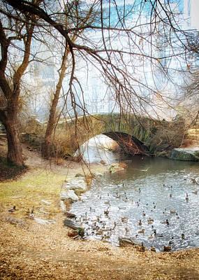 Duck Pond In Central Park Art Print by Vicki Jauron