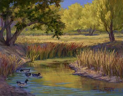 Duck Pond Art Print by Jane Thorpe