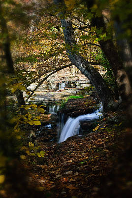 Photograph - Duck River Falls by George Taylor