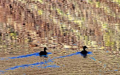 Photograph - Duck Trails by Britt Runyon