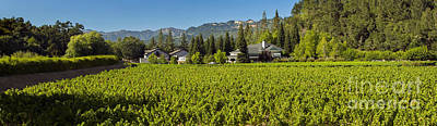 Duckhorn Vineyard Art Print by Jon Neidert