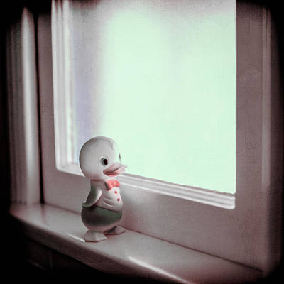 Duckie At The Window Art Print