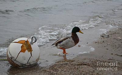 Duckie Duckie Art Print by Renie Rutten