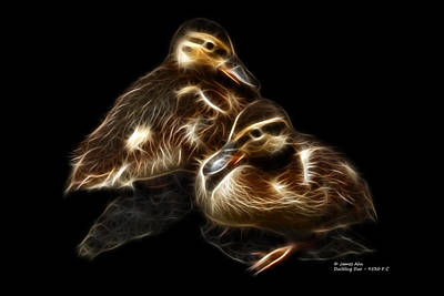 Digital Art - Duckling Duo - 9530 F C by James Ahn