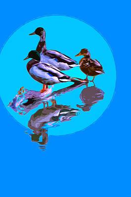 Wood Duck Mixed Media - Ducks 2 by Brian Stevens