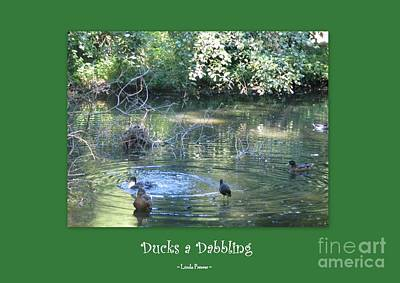 Ducks A Dabbling Art Print by Linda Prewer