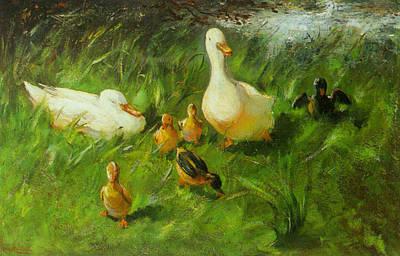 Waterfowl Digital Art - Ducks And Ducklings On A Riverbank by Franz Helfferich