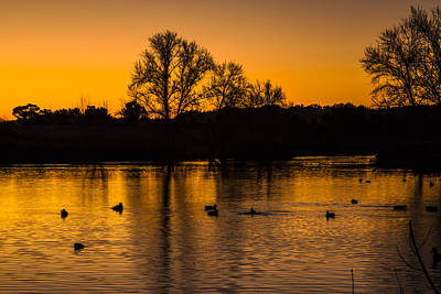 Photograph - Ducks At Sunrise On Golden Lake Nature Fine Photography Print  by Jerry Cowart