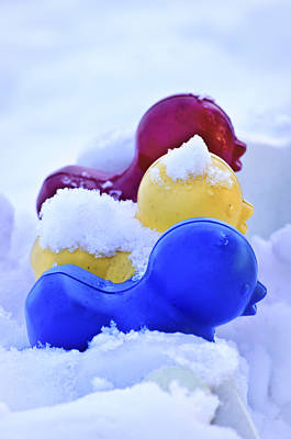 Drifting Snow Photograph - Ducks In A Row by Christi Kraft