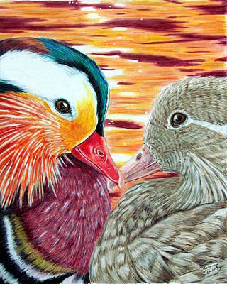 Mandarin Drawing - Ducks In Love by Shannon Clements