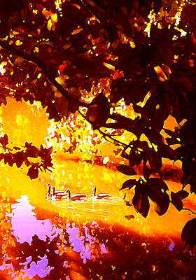 Garden Painting - Ducks In The Disitance by Amy Vangsgard