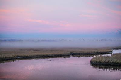 Rowing - Ducks in The Mist by Paula OMalley
