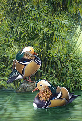 Wood Duck Painting - Ducks by Larry Taugher