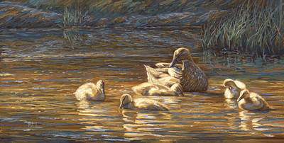 Duck Wall Art - Painting - Ducks by Lucie Bilodeau