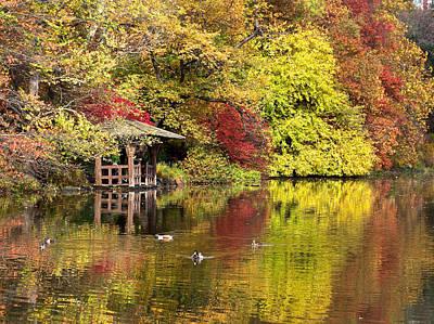 Photograph - Ducks On A Golden Pond by Cornelis Verwaal