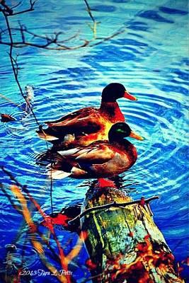 Art Print featuring the photograph Ducks On A Log by Tara Potts