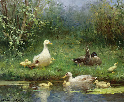 Ducks On A Riverbank Art Print