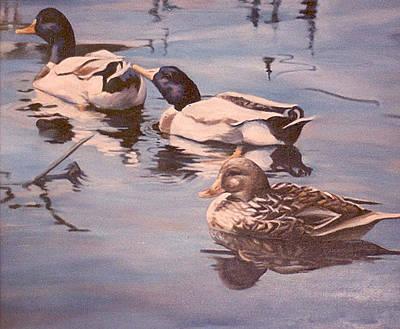 Ducks On The Cachuma Art Print by Donna Tucker
