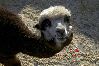 Dude Happy Fathers Day Art Print