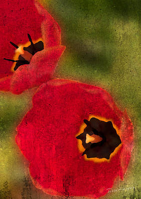 Photograph - Duet by Terri Harper