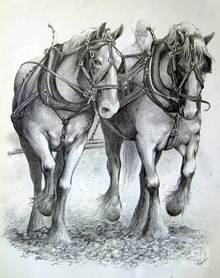 Art Print featuring the drawing Duke And Molly by Carol Hart
