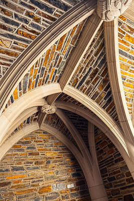 Photograph - Duke Arches by Melinda Fawver