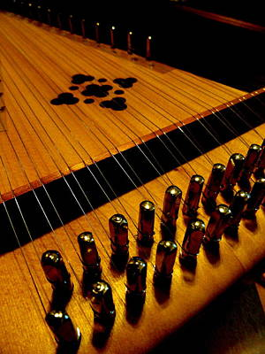 Photograph - Dulcimer by Mary Beth Landis