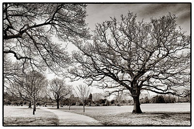 Photograph - Dulwich Park by Lenny Carter
