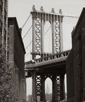 Photograph - Dumbo by Cornelis Verwaal