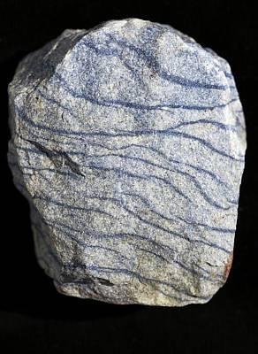 Fibrous Crystals Photograph - Dumortierite Veins In Quartzite by Dirk Wiersma