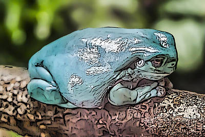 Digital Art - 00014 Dumpy Tree Frog by Photographic Art by Russel Ray Photos