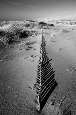 Dunes Wall Art - Photograph - Dune # 5 by Pascal Rousse