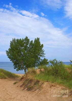 Indiana Dunes Photograph - Dune by Ann Horn