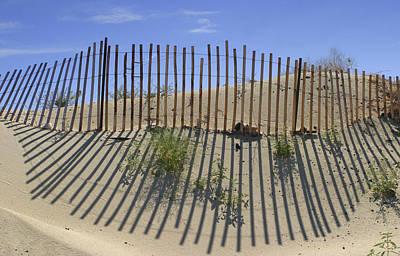 Photograph - Dune Builder by Scott Campbell