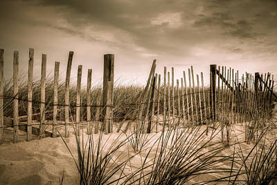 Photograph - Dune Fence by Brian Caldwell
