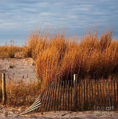 Photograph - Dune Fence by Debra Fedchin