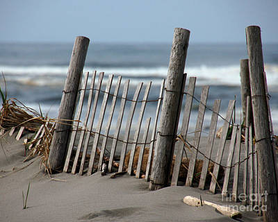 Photograph - Dune Fence I by Chuck Flewelling