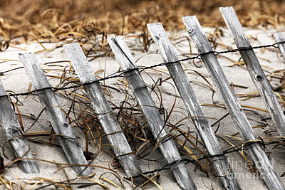 Old School House Photograph - Dune Fence I by John Rizzuto