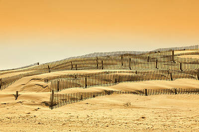 Sand Fences Photograph - Dune Fence by Jay Wickens