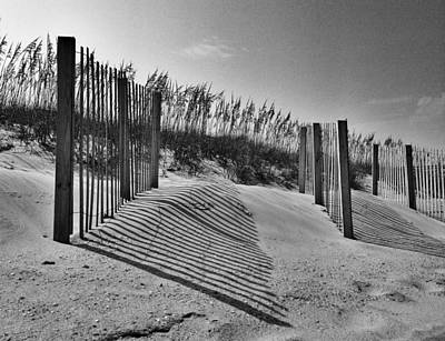 Photograph - Dune Fences by Dave Hall