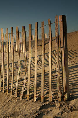 Dune Fences Early Morning II Art Print by Steven Ainsworth