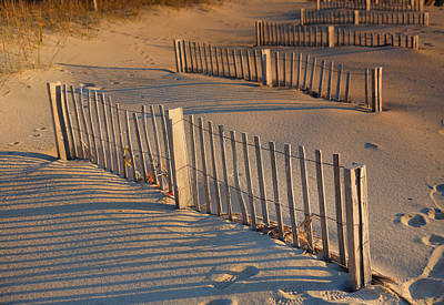 Dune Fences Early Morning Art Print by Steven Ainsworth