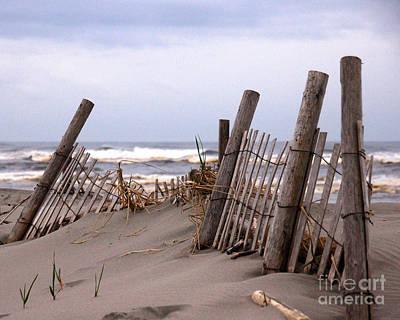Photograph - Dune Fences IIi by Chuck Flewelling